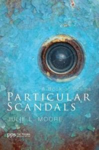 Particular Scandals book cover